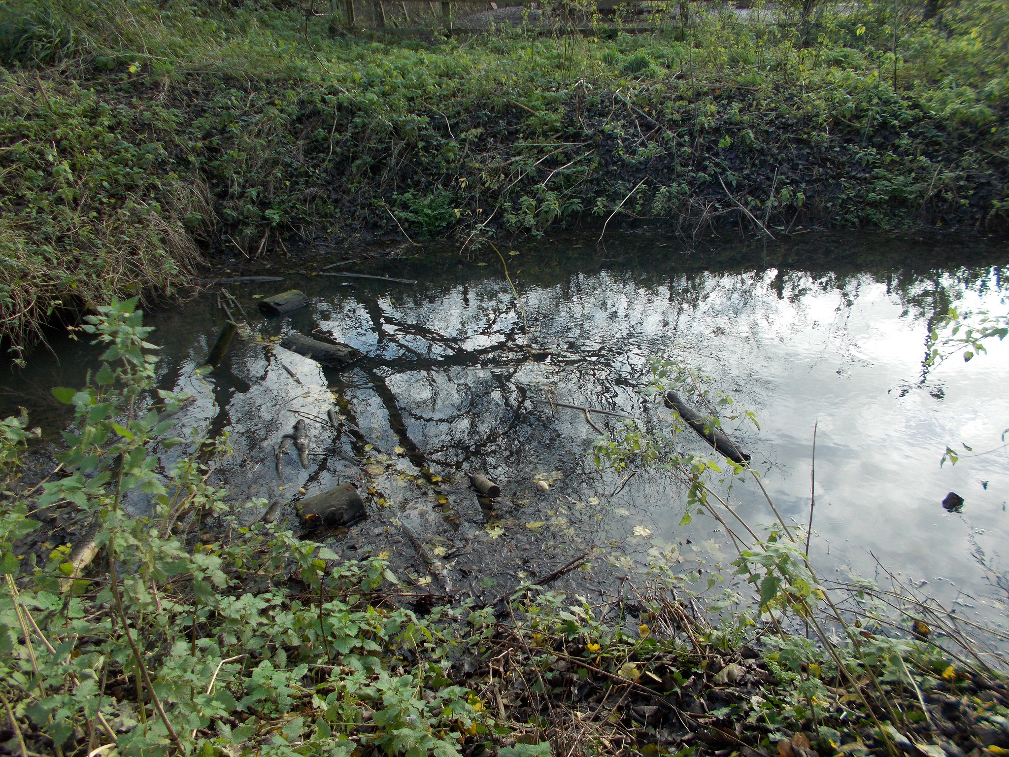 Rhine and ditch clearance in South Gloucestershire