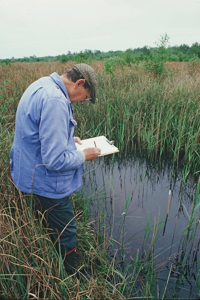 Protecting wetland habitat