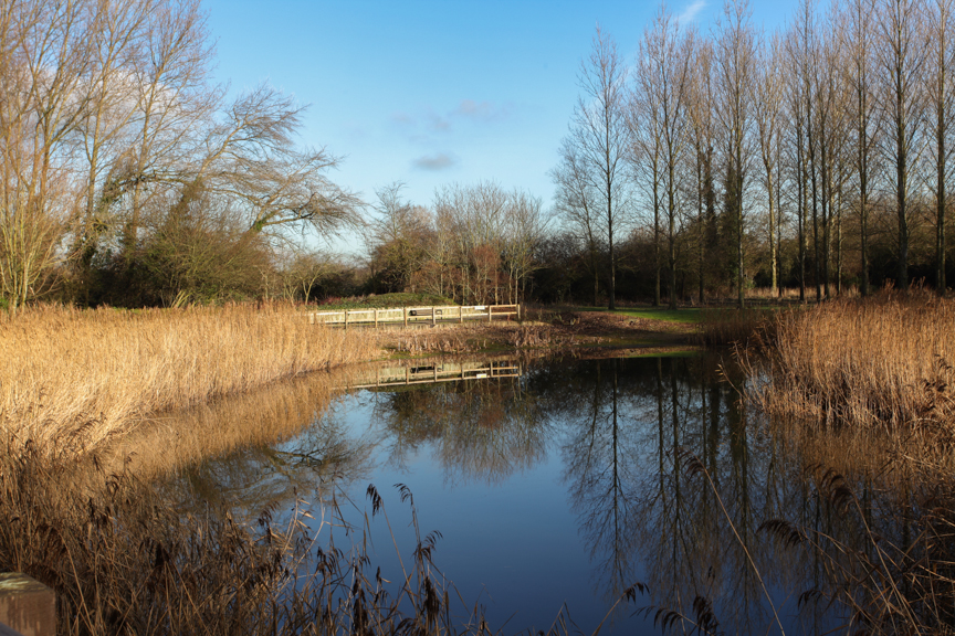 Creation of Ponds in Severn Vales