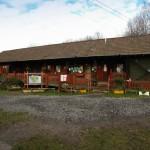 Lawrence Weston Communty Farm, watery treasures